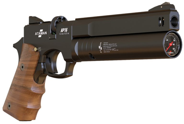 5 Best PCP Air Pistol Reviews – Buyer Guide 2021
