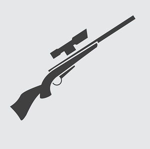 Air Rifle Buyer Guide